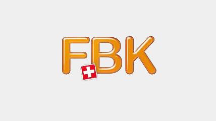 fbk 2013